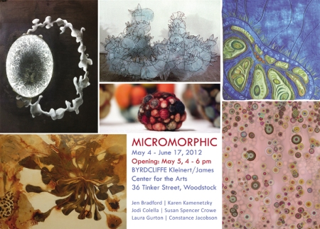 Micromorphic show