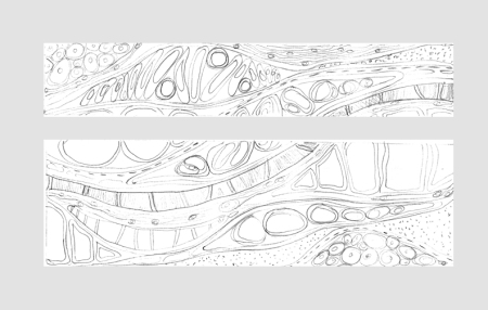 rough sketch for curved wall 1