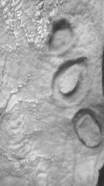 felt craters